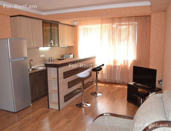 2 bedrooms apartment for rent Mashtots Ave, Center Yerevan, 60493