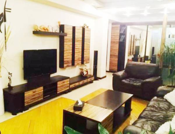 2 bedrooms apartment for rent خیابان امیریان, مرکز شهر ایروان, 20664